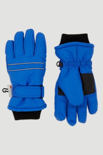 Thinsulate Blue Ski Glove