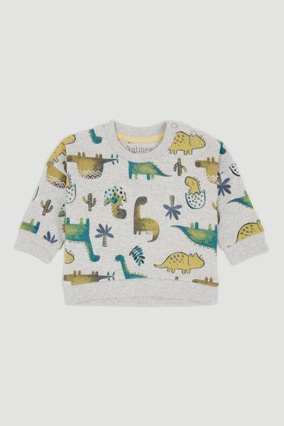 Grey Dinosaur Sweatshirt