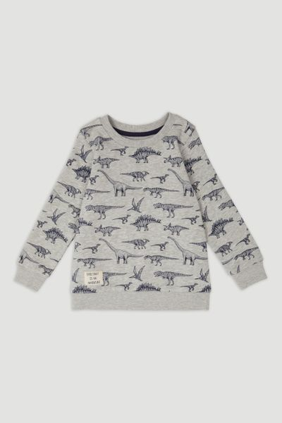 Grey Marl Dino Sweatshirt
