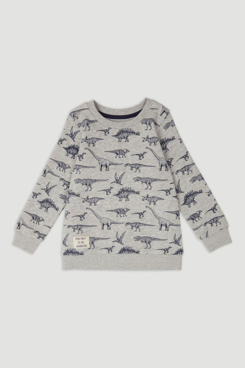 Grey Marl Dino Sweatshirt