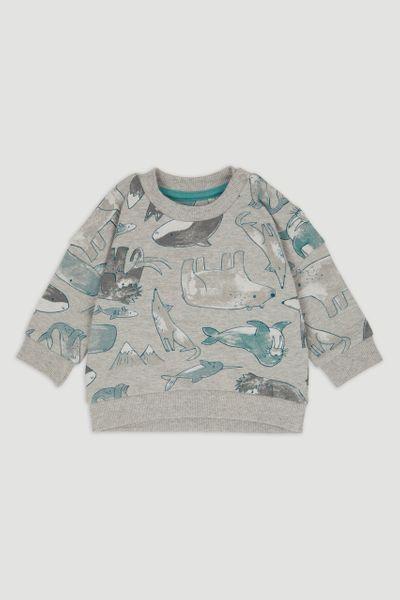 Arctic Print sweatshirt