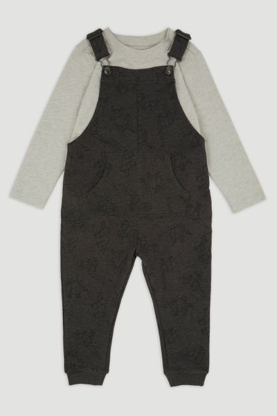Dino Sweatshirt Dungaree Set