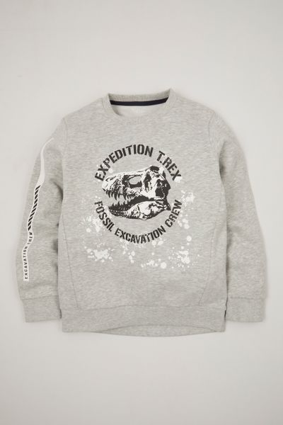 Dino Expedition sweatshirt
