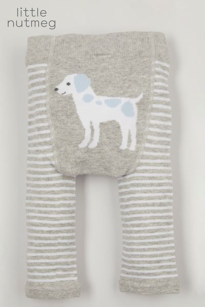 Little Nutmeg Dog Leggings