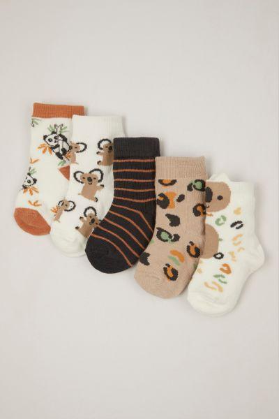 5 Pack Koala Socks