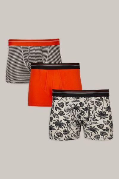 3 Pack Orange & Palm Trunks