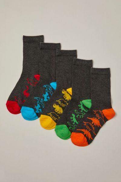 5 Pack Dinosaur Grey Socks
