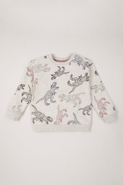 Colourful Dinosaur sweatshirt