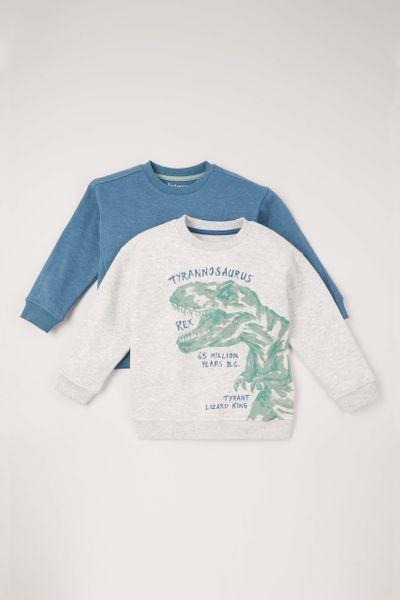 2 Pack Dino Sweatshirts 1-10 years