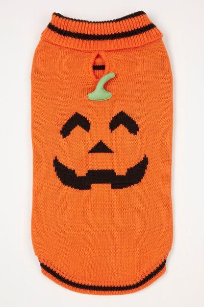 Halloween Pumpkin Dog Jumper