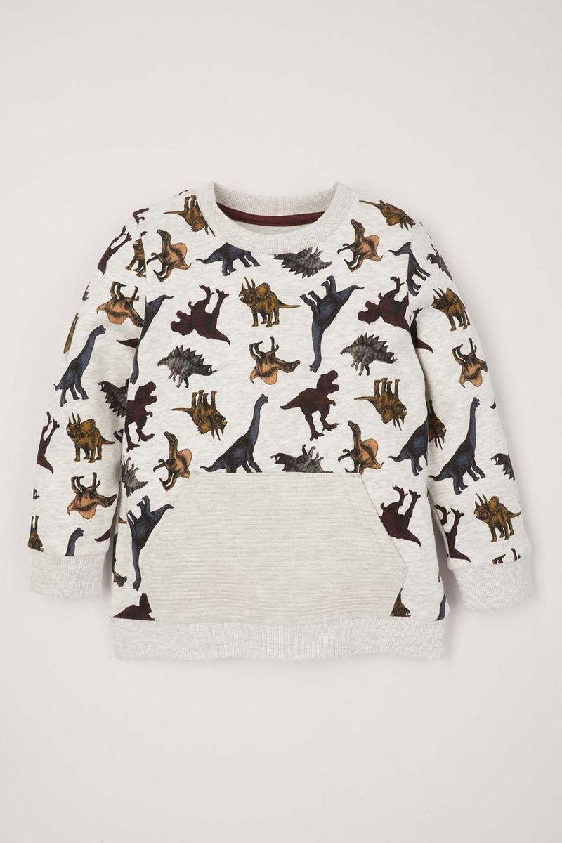 Dinosaur Rib Pocket Sweatshirt