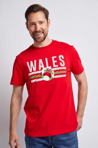 Mens Wales T-shirt