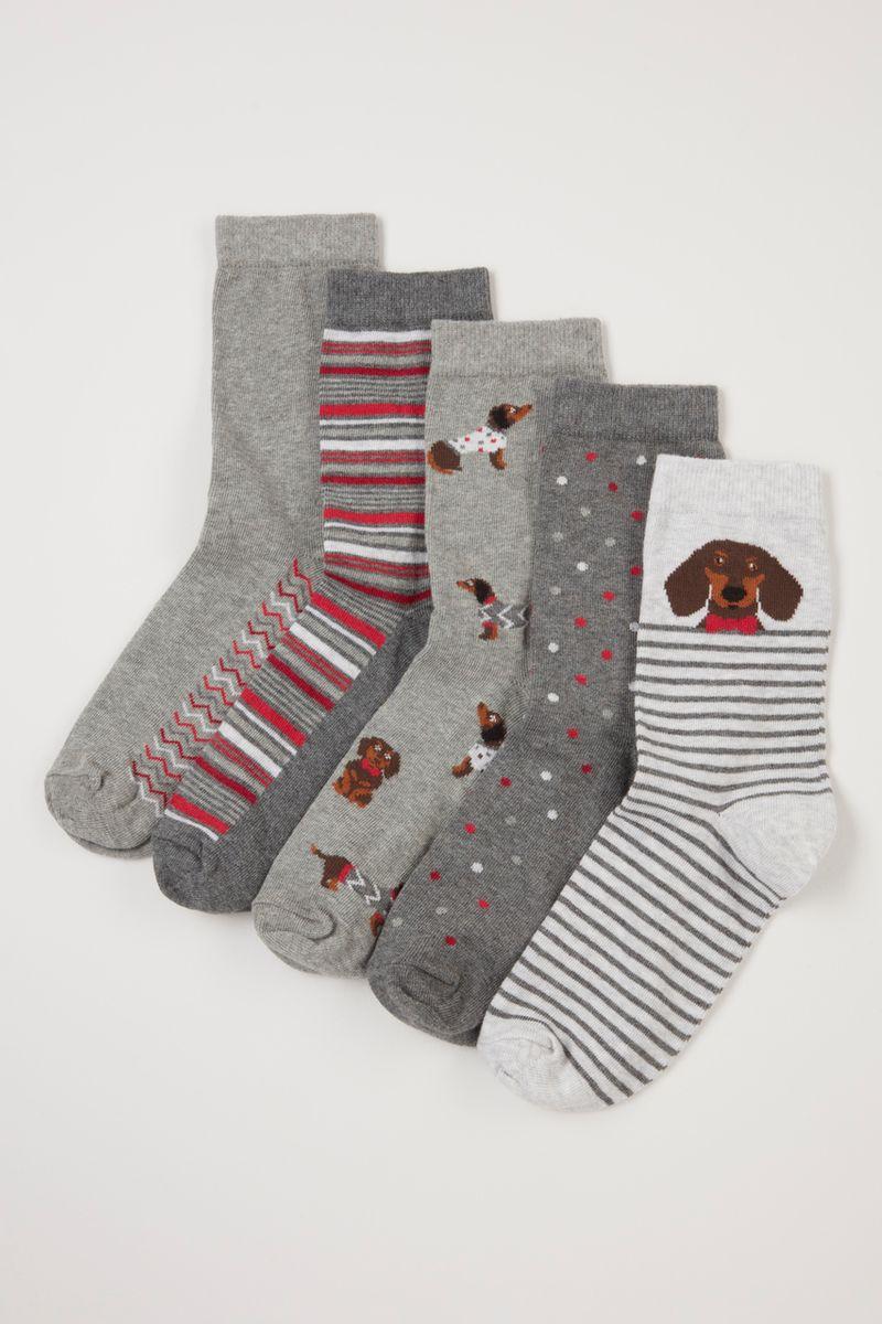 5 Pack Dachshund Socks